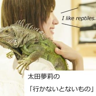 太田夢莉の「行かないとないもの」/念願の『爬虫類カフェ』